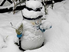Unser Mitarbeiter und Helfer des Monats Januar: Frosti